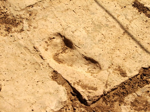 Footprint at Tchogha Zanbil