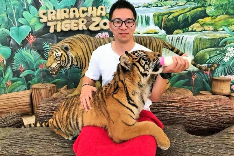 Selfie with Tigers, a Type of Hurting Wildlife