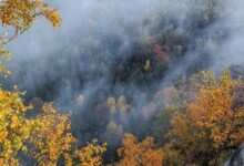 fire prevention in nature by aerial measures